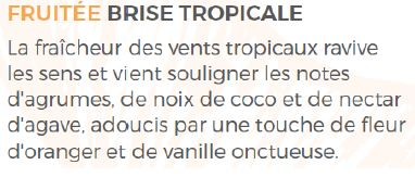 brise tropicale